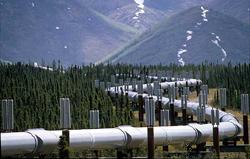 Habitat Management Pipeline Services