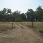 Lions Park (2)